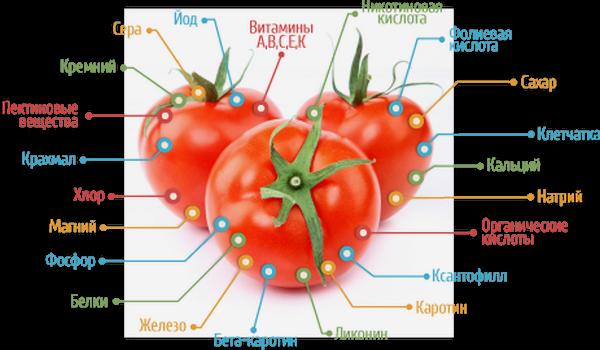 Можно ли есть помидоры при мочекаменной болезни?